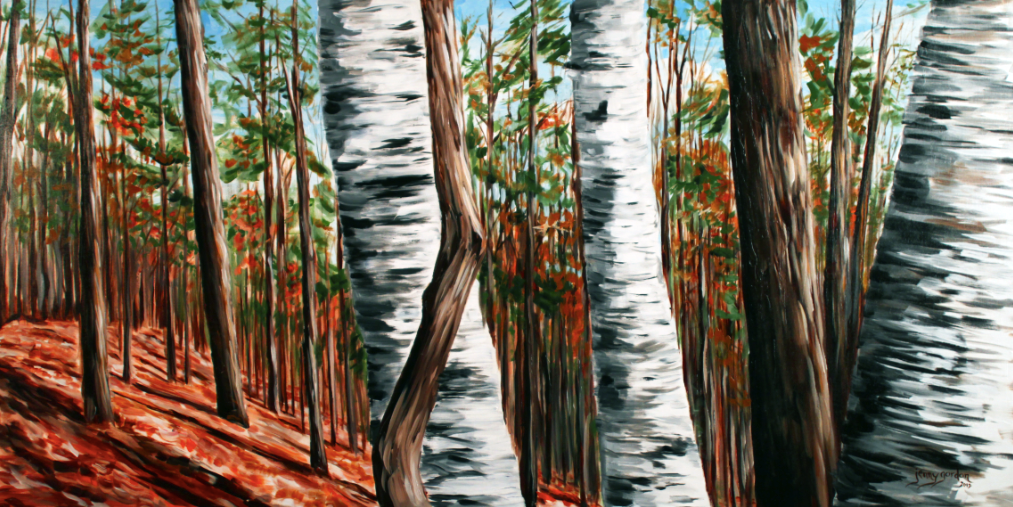 Painting of Birches In The Fall by Jenny Gordon