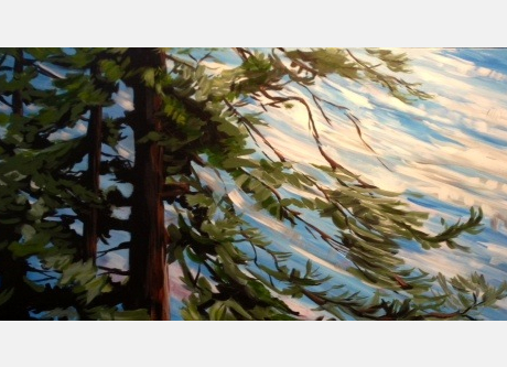 Wind in the Pine Trees